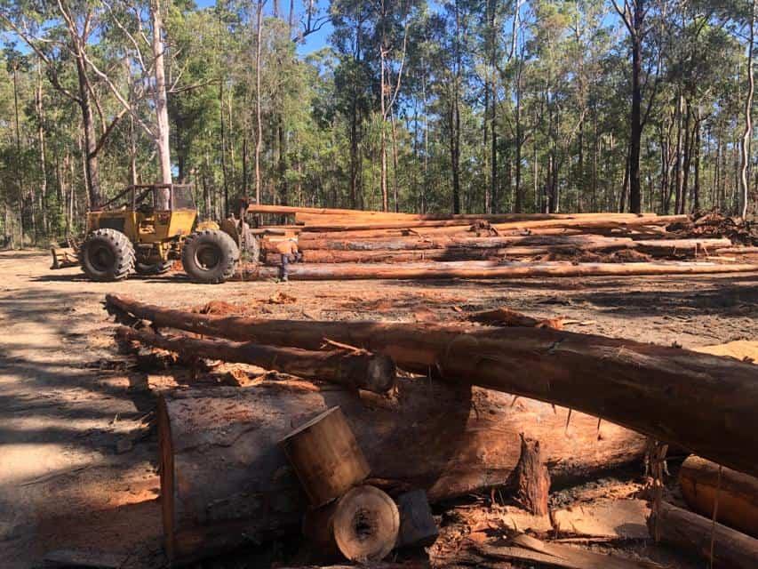 Grafton Hardwood Sawmill