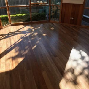 Solid Spotted gum 85 3